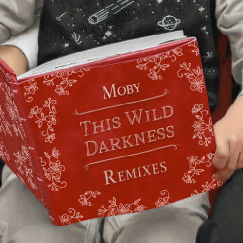 This Wild Darkness Remixes